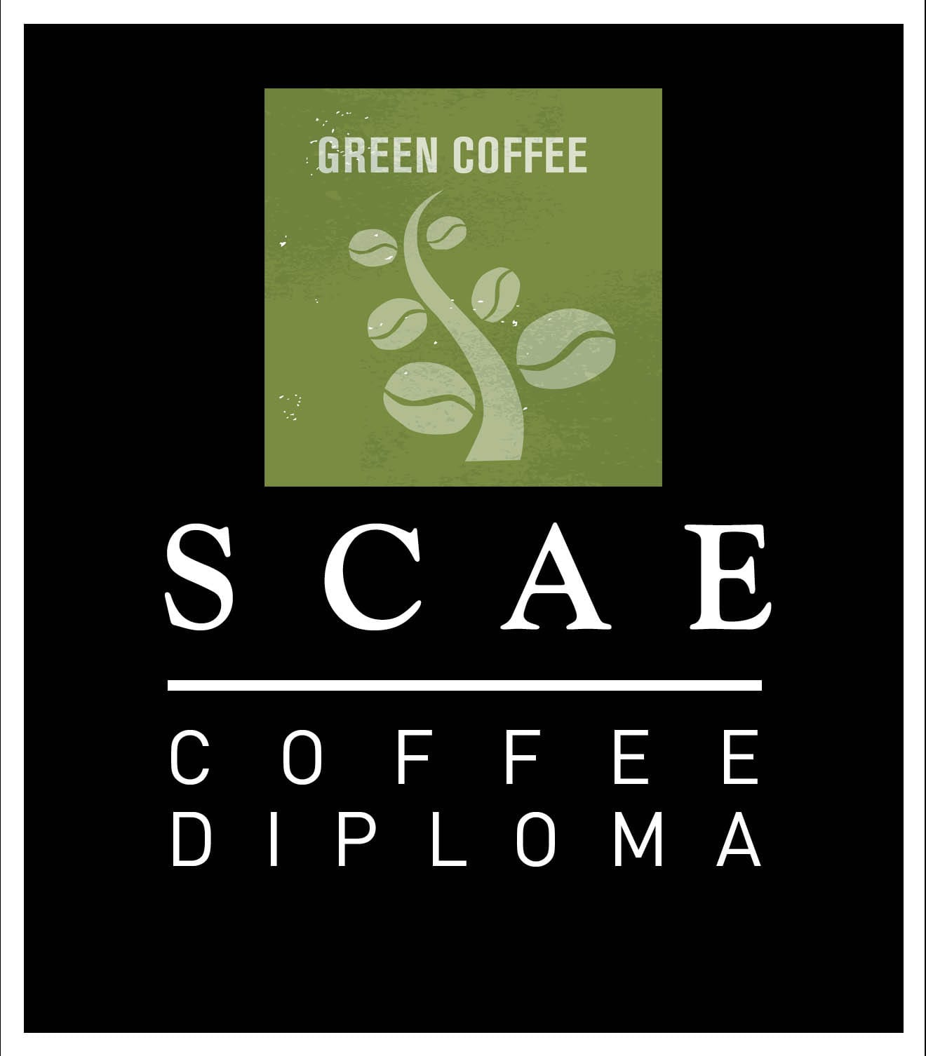 SCAE Green Coffee Diploma (ONLY For Passed Exams)