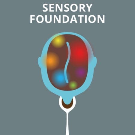 Sensory Foundation Book