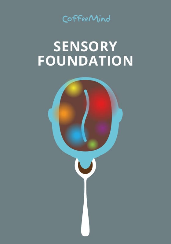 Book: Sensory Foundation – New Edition 2018 (Preorder. Estimated Shipping Date: June 15, 2018)