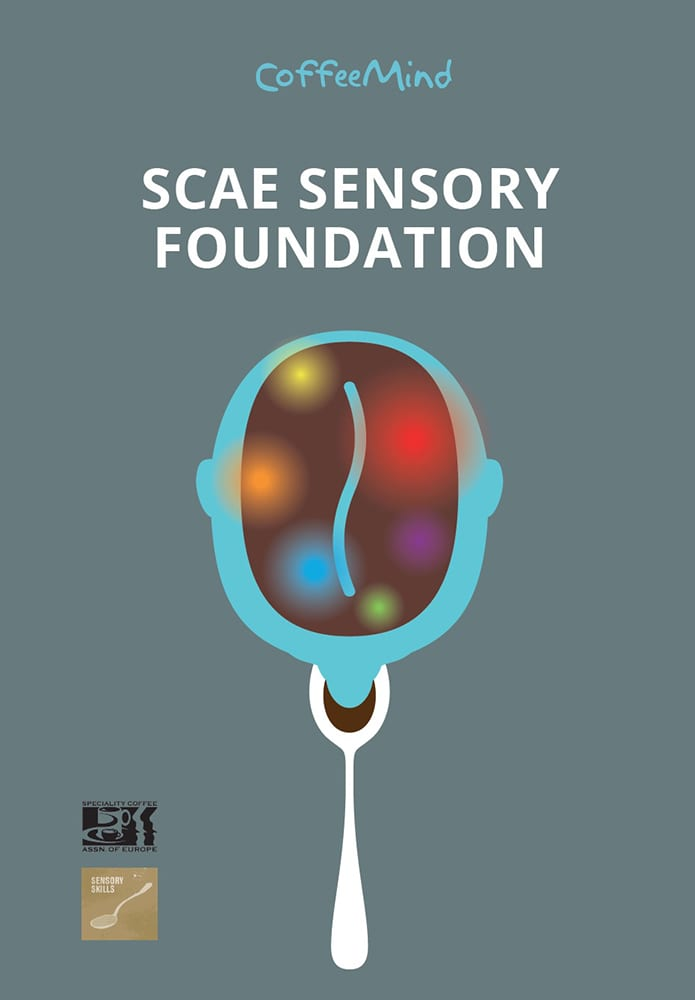Book: SCAE Sensory Foundation